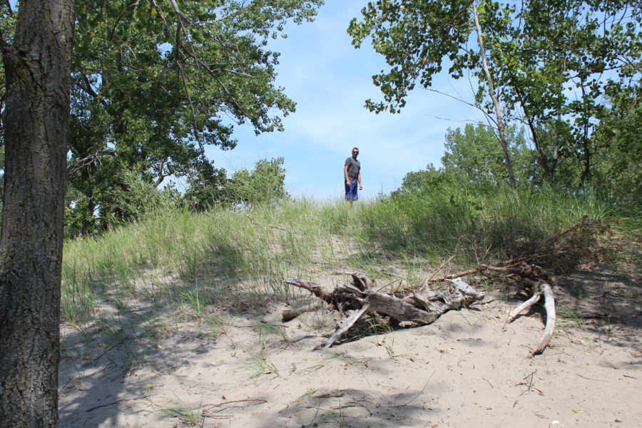 sand dunes at Long Point Provincial Park