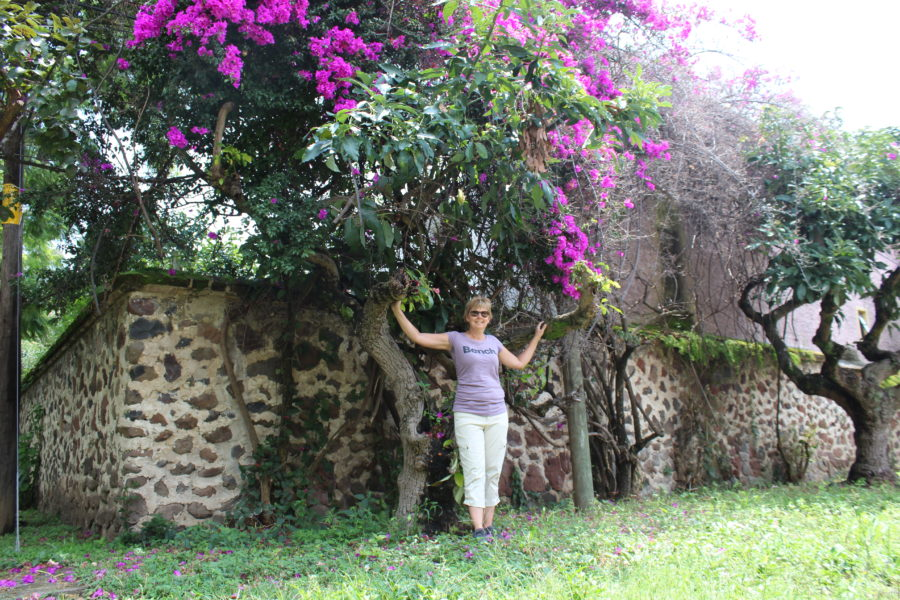 standing in front of a flowering tree in Ajijic