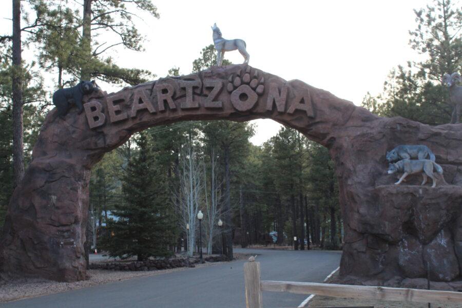 Bearizona Williams AZ