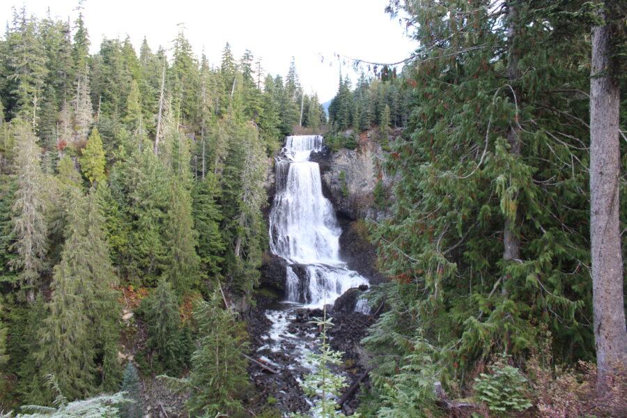 Alexander Falls Whistler BC